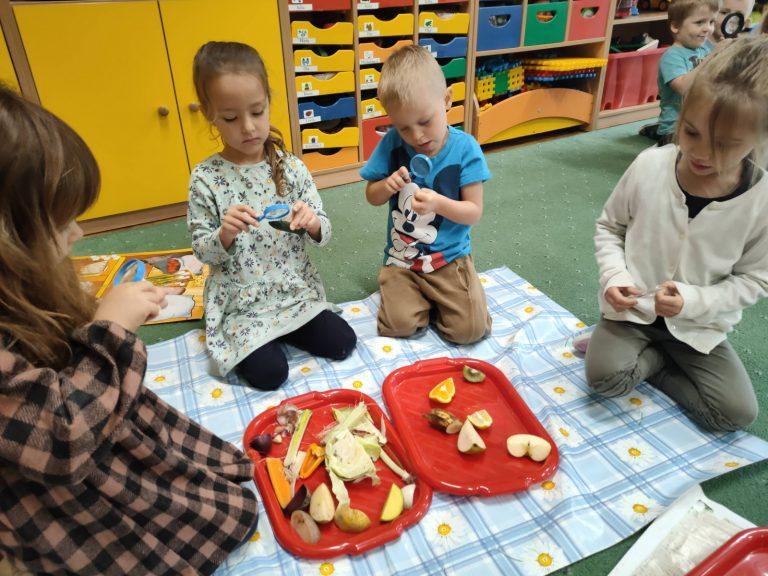 dzieci ogladaja przez lupy warzywa i owoce